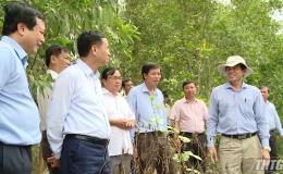Bộ NN&PTNT làm việc với tỉnh Tiền Giang về việc xây dựng nhà máy chế biến nông sản