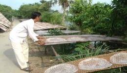 Làng nghề bánh tráng Hậu Thành nhộn nhịp sản xuất bánh phục vụ tết 2020