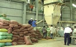 """Phóng sự """"Phát triển công nghiệp hỗ trợ ở Tiền Giang """""""