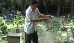 """""""Mật ngọt"""" từ con ong của người cựu chiến binh huyện Tân Phú Đông"""