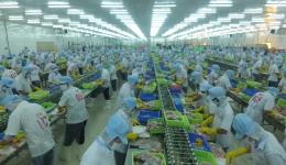 Những thành tựu nổi bật của kinh tế Tiền Giang trong năm 2019
