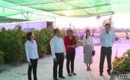 Lãnh đạo UBND tỉnh Tiền Giang kiểm tra công trình phục vụ Tết năm 2020