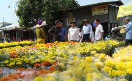 Lãnh đạo UBND tỉnh Tiền Giang kiểm tra đường hoa, chợ hoa các địa phương