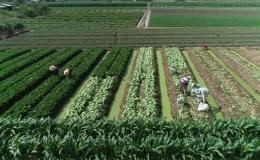 Chuyên đề 27.01 – Chợ Gạo vững tin bước vào năm 2020