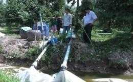 Phương án chống hạn mặn cho vườn sầu riêng