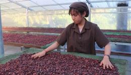 Chuyên đề 20.3 – Tình hình kinh tế xã hội Châu Thành những tháng đầu năm