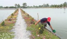 Chuyên đề 18.3 – Anh Ngô Tấn Danh nhiệt tình làm công tác xã hội và làm kinh tế giỏi