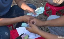 Triệt phá tụ điểm đá gà và lắc tài xỉu tạm giữ 54 đối tượng tại Tân Phước