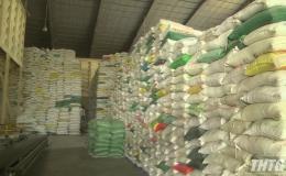 Doanh nghiệp Tiền Giang đề nghị sớm cho xuất khẩu lúa gạo trở lại