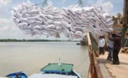 Giá lúa tăng nhẹ sau quyết định cho xuất khẩu gạo trở lại