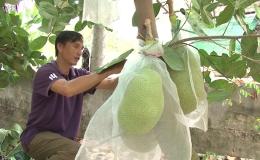 Thanh niên tiêu biểu Lê Thành Giang vươn lên lập nghiệp thành công