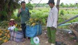 Chuyên đề 28.5 – Gương điển hình phong trào nông dân thi đua sản xuất giỏi