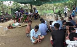 Công an Tiền Giang triệt phá tụ điểm đá gà tại Thị xã Cai Lậy và Chợ Gạo