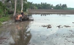 Chuyên đề 30.6 – Nông dân Gò Công Tây xuống giống vụ lúa hè thu năm 2020