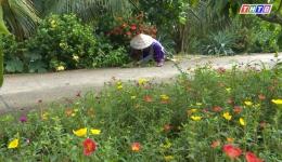 Chuyên đề 23.7 – Những tuyến đường hoa tưng bừng khoe sắc