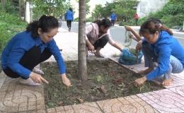 Chuyên đề 03.7 – Thị trấn Tân Hòa ra quân dọn vệ sinh và trồng hoa tạo mỹ quan đô thị
