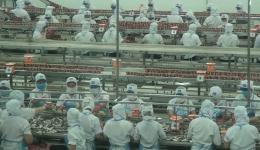 Người lao động 16.8.2020