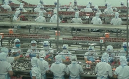 Người lao động 12.9.2021