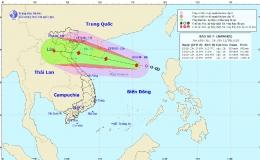 Bão số 7 cách quần đảo Hoàng Sa khoảng 430km, giật cấp 10