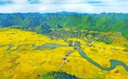 """Khám phá """"Thung lũng vàng"""" Bắc Sơn – điểm đến du lịch cộng đồng xứ Lạng"""