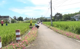 Chuyên đề 07.10 – Những tuyến đường hoa đẹp xã nông thôn mới