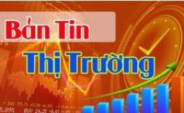 Bản tin thị trường 15.11.2020