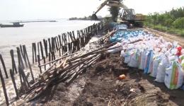Chuyên đề 20.11 – UBND Huyện Gò Công Đông kiểm tra sửa chữa điểm sạt lở đê tại xã Tân Thành