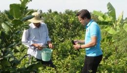 """Cây lành trái ngọt """"Trồng hoa lài cho kinh tế cao ở Vĩnh Hựu – Gò Công Tây"""""""