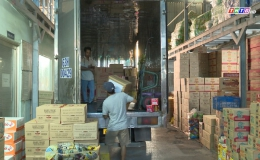 Chuyên đề 15.01 – Các doanh nghiệp chuẩn bị hàng hóa phục vụ Tết Tân Sửu 2021