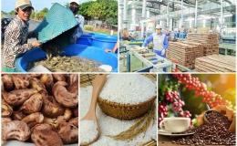Điểm danh một số mặt hàng nông sản xuất khẩu vượt ngưỡng tỷ đô