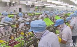 Việc làm cho lao động gặp nhiều khó khăn do dịch bệnh