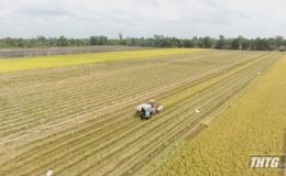 Sở NN&PTNT sơ kết sản xuất vụ Đông Xuân tại các huyện phía Tây của tỉnh