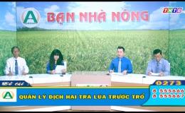 """Bạn nhà nông """"Quản lý dịch hại trà lúa trước trổ"""""""