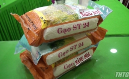 Cái Bè đánh giá, xếp hạng sản phẩm OCOP đối với gạo Thiên Hộ ST24 và Nàng hoa 9