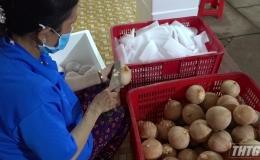 HTX Vĩnh Kim và bài toán tiêu thụ trái cây trong mùa dịch Covid 19