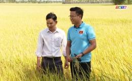 """Cây lành trái ngọt """"Mô hình sản xuất lúa khép kín, từ trồng đến tiêu thụ của nông dân huyện Gò Công Tây"""""""