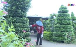 Chuyên đề 10.6 – Nét đẹp phụ nữ xã Thạnh Tân trên những tuyến đường hoa