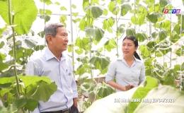 Những mô hình sản xuất nông sản theo hướng an toàn