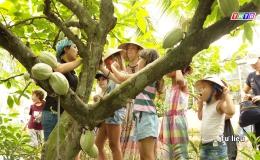 """Cây lành trái ngọt """"Những mô hình chế biến nông sản từ cây trồng đặc sản Tiền Giang"""""""