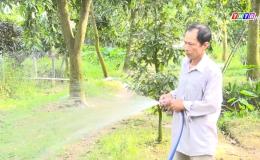 Chuyên đề 13.9 – Cái Bè nâng cao chất lượng phong trào nông dân sản xuất kinh doanh giỏi