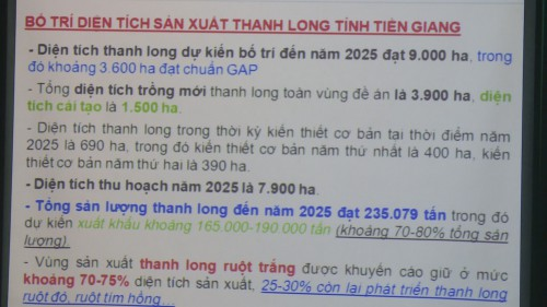 Thanh long1