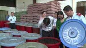 Kiểm tra an toàn vệ sinh thực phẩm cơ sở sản xuất cà phê và đậu phộng