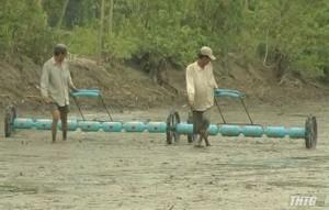 Cái Bè gieo sạ hơn 17.000 hecta lúa Hè Thu 2019