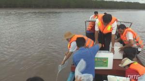 Tân Phú Đông thả gần 1 triệu con tôm giống ra môi trường tự nhiên