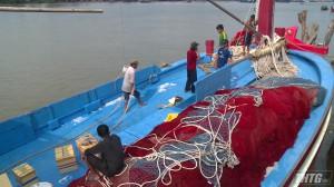 Thứ trưởng Bộ NN&PTNT làm việc với Cảng cá Tiền Giang