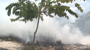 Cháy tại khu đất trống trên địa bàn Phường 6, Thành phố Mỹ Tho