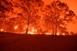 Australia cấp gói cứu trợ 76 triệu AUD cho ngành du lịch sau cháy rừng