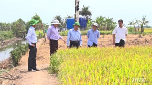 Chủ tịch UBND tỉnh Tiền Giang khảo sát công tác phòng chống hạn, và xâm nhập mặn tại các huyện phía Đông