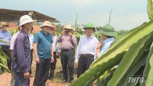 Bộ NN&PTNT khảo sát công tác chuyển đổi cây trồng của huyện Tân Phước