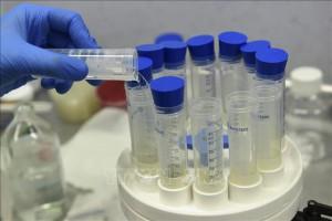 EU sẽ chi 2,4 tỷ EUR mua các loại vaccine phòng Covid-19